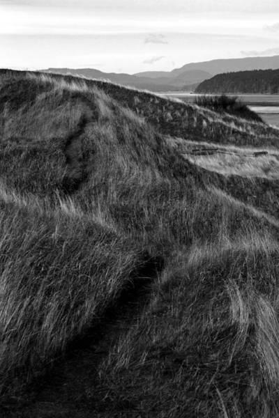 Photograph - Solemn Vow by Joseph Noonan