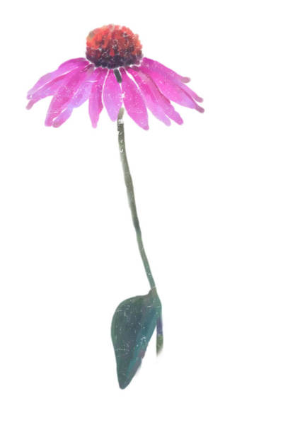 Coneflower Painting - Solitary Beauty by Heidi Smith