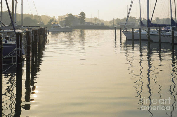 Photograph - Solomons Island Maryland by Thomas R Fletcher