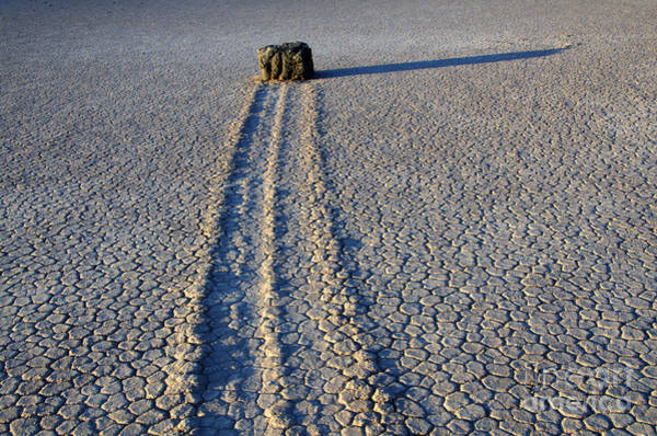 Racetrack Playa Photograph - Some Things Take Time by Bob Christopher