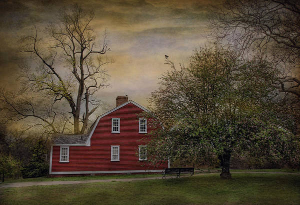 Red Robin Photograph - Song At Dusk by Robin-Lee Vieira