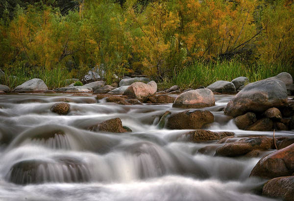 Photograph - Soothing Waters Of The Salt River by Dave Dilli
