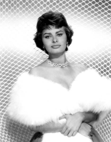 1958 Movies Photograph - Sophia Loren, As Seen In The Film by Everett