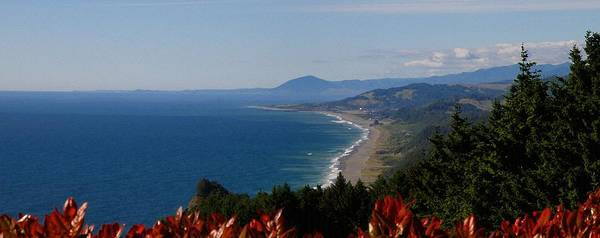 Oregon Coast Mixed Media - South Beach Overview by Tatiacha  Bhodsvatan