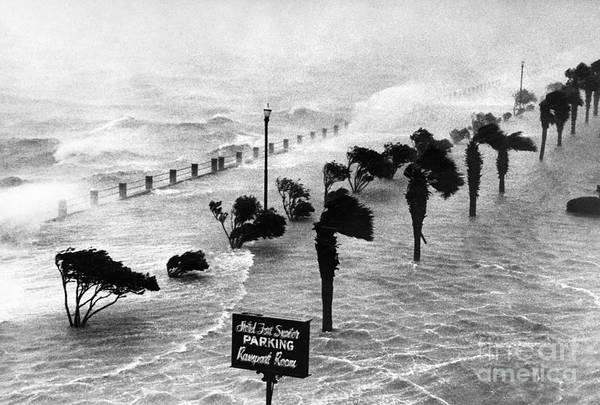 Photograph - South Carolina: Hurricane by Granger