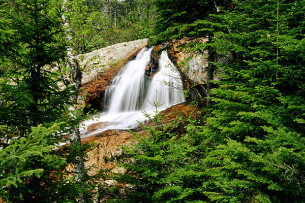 Gros Morne Photograph - Southwest Brook Falls, Gros Morne by Mike Grandmailson