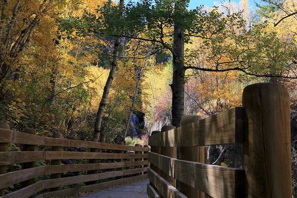 Photograph - Spearfish Canyon Walkway by Donald J Gray