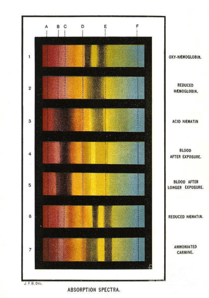 Photograph - Spectra Chart, Blood Samples, 1894 by Science Source