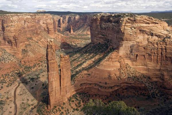 Spider Rock Photograph - Spider Rock, Arizona, Usa by Bob Gibbons