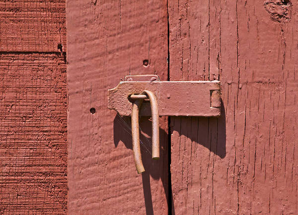 Photograph - Spiderweb On A Latch by David Letts