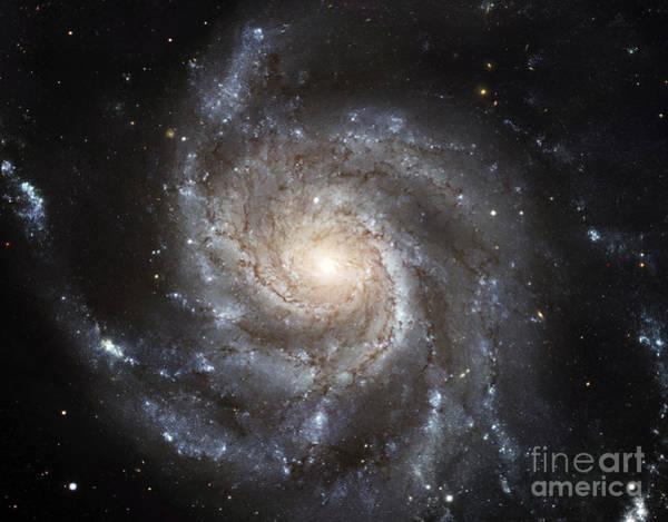 Photograph - Spiral Galaxy Messier 101 by Stocktrek Images