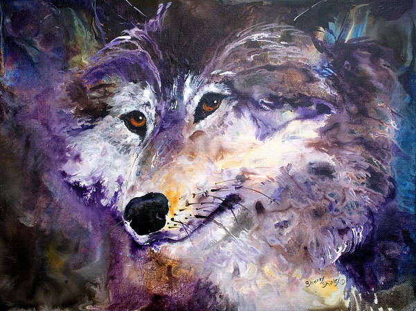 Painting - Spirit Wolf by Sherry Shipley