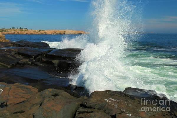 Photograph - Splash by Adam Jewell