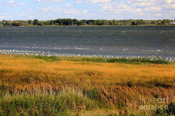 St Ignace Wall Art - Photograph - Splendors Of The St Lawrence by Sophie Vigneault