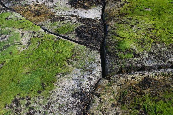 Photograph - Split Rock Green by David Kleinsasser