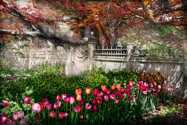 Photograph - Spring - Gate - My Spring Garden  by Mike Savad