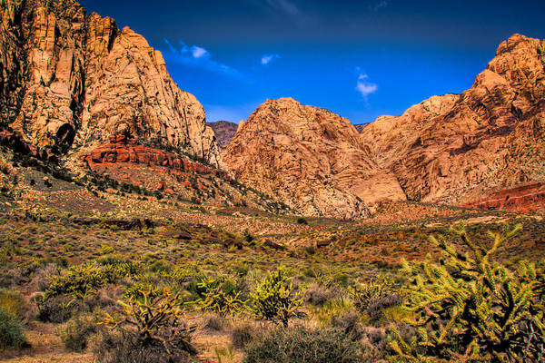 Photograph - Spring Mountain Ranch In Red Rock Canyon II by David Patterson