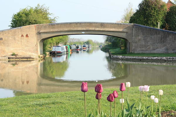 Warwickshire Photograph - Spring On The Oxford Canal by Linsey Williams