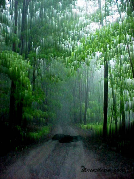 Photograph - Spring Rain Meyers Road-livingston Manor Ny by Ericamaxine Price