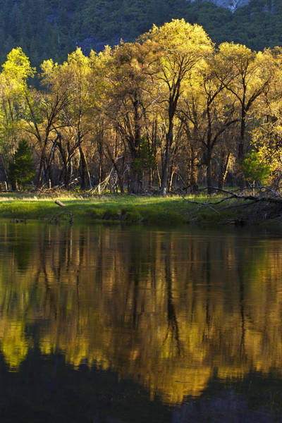 Photograph - Spring Reflections by Rick Berk