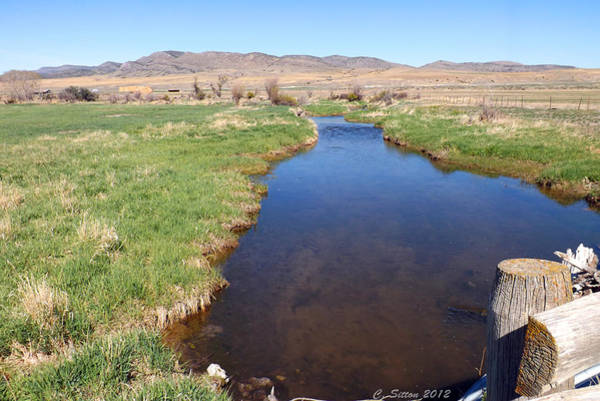 Photograph - Spring Stream 2 by C Sitton