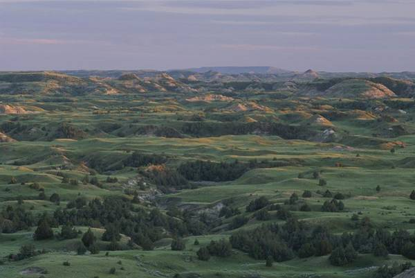 North Dakota Badlands Wall Art - Photograph - Spring View Of The Badlands Of Painted by Michael Melford