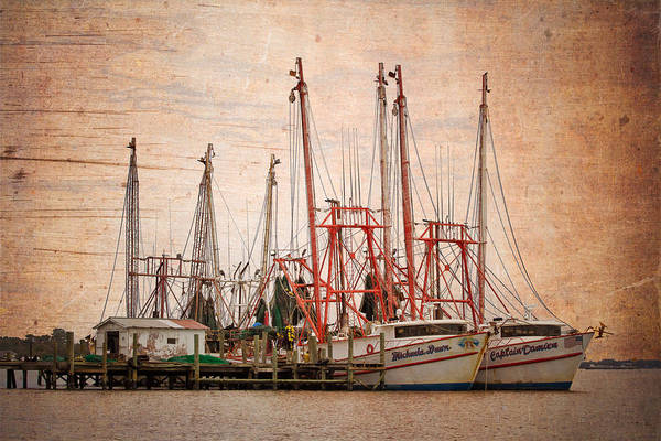Photograph - St John's Shrimping by Debra and Dave Vanderlaan