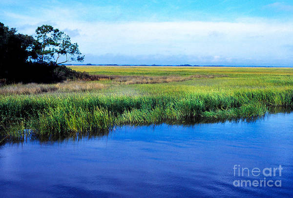 Photograph - St Simons Island by Thomas R Fletcher