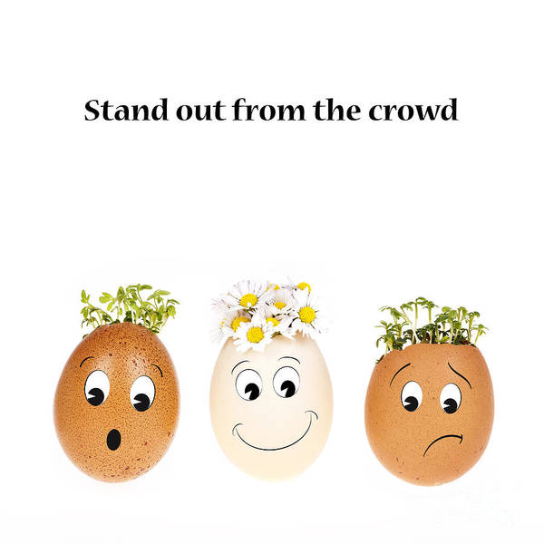 Stand Out Wall Art - Photograph - Stand Out From The Crowd by Jane Rix