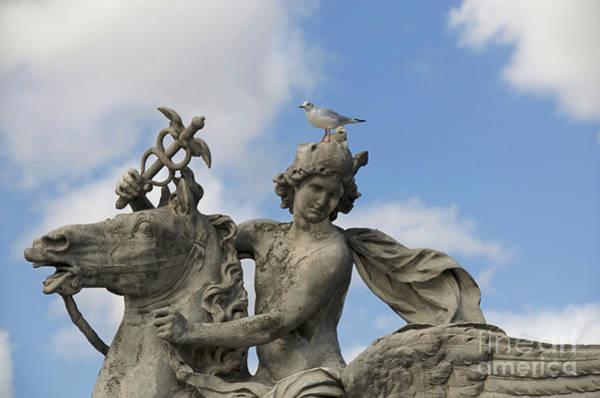 Concorde Photograph - Statue . Place De La Concorde. Paris. France by Bernard Jaubert
