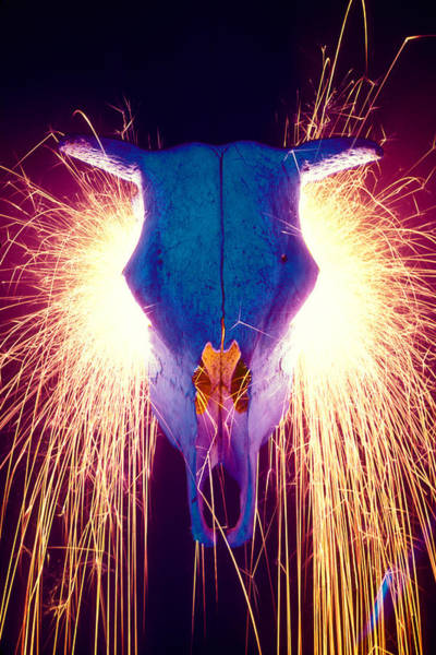 Steer Photograph - Steer Skull With Sparks  by Garry Gay