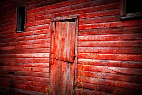 Photograph - Still Got Color by Julie Hamilton