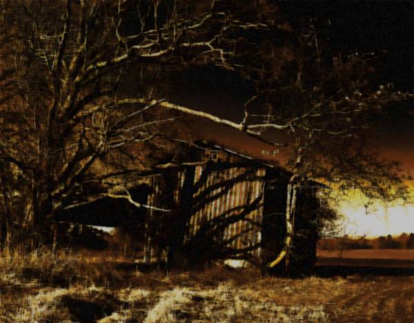 Wall Art - Photograph - Still House by David A Brown