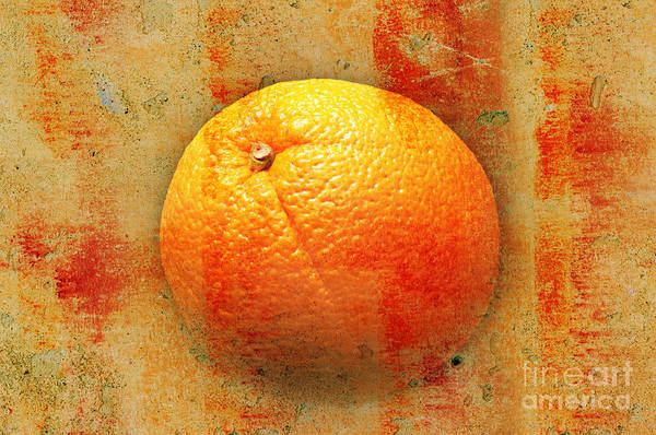 Photograph - Still Life Orange Abstract by Andee Design