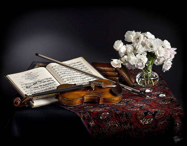 Photograph - Still Life With Violin And Flowers by Endre Balogh