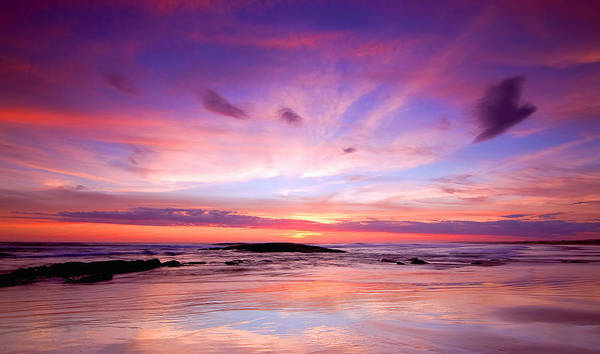 Photograph - Stockton Beach Sunset by Paul Svensen