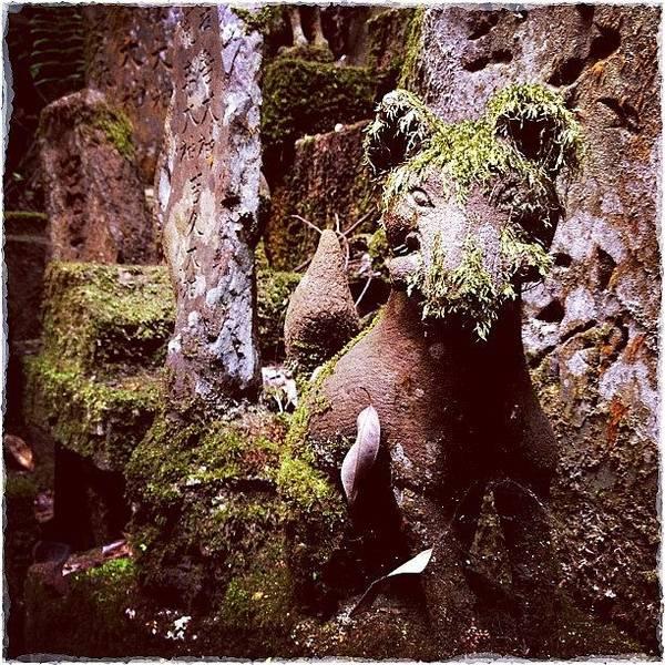 Spiritual Wall Art - Photograph - Stone Carving In The Fushini-inari Taisha by Marc Gascoigne