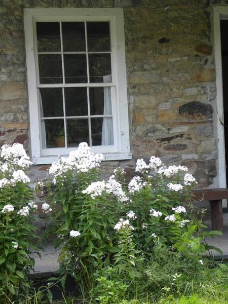 Photograph - Stone House Window by Peggy  McDonald