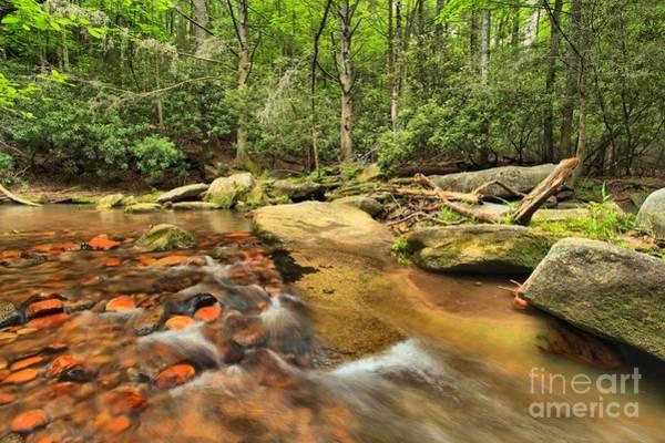 Photograph - Stone Mountain Stream by Adam Jewell