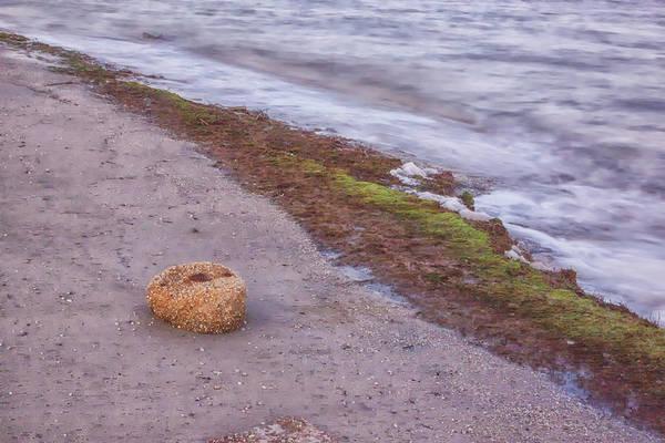 Photograph - Stone On The Beach by Tom Singleton