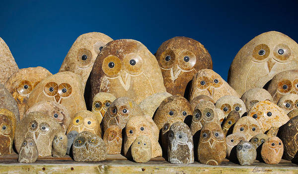 Photograph - Stone Owls by Diana Haronis