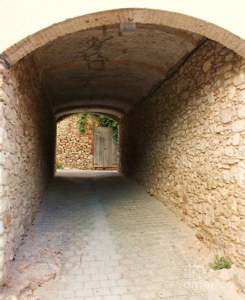 Wall Art - Photograph - Stoned Tunnel by Dennis Curry