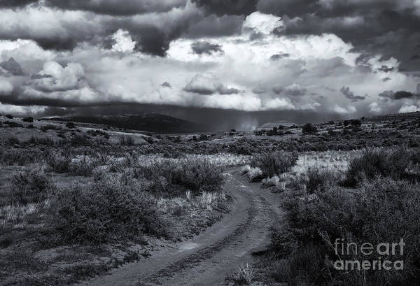 Wall Art - Photograph - Storm Track by Mike  Dawson