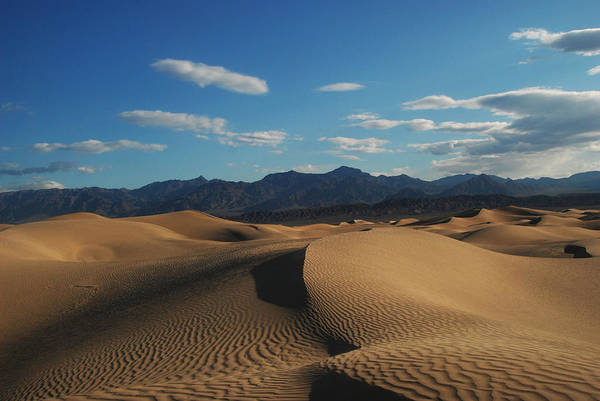 Photograph - Stovepipe Wells Dunes  by Craig Ratcliffe