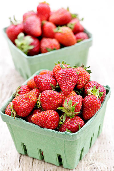 Green Berry Photograph - Strawberries by Elena Elisseeva