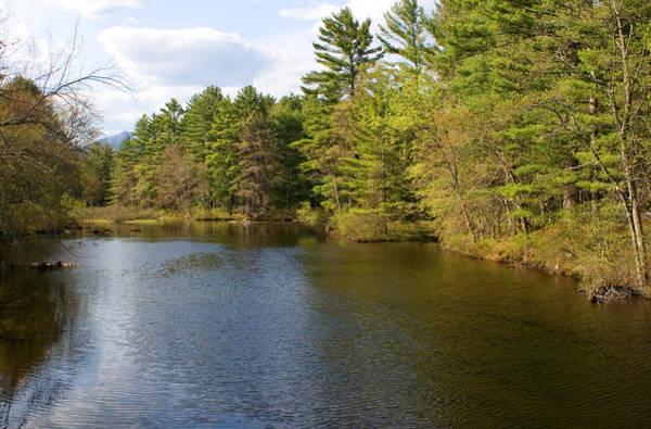Photograph - Stream In Spring by Larry Landolfi