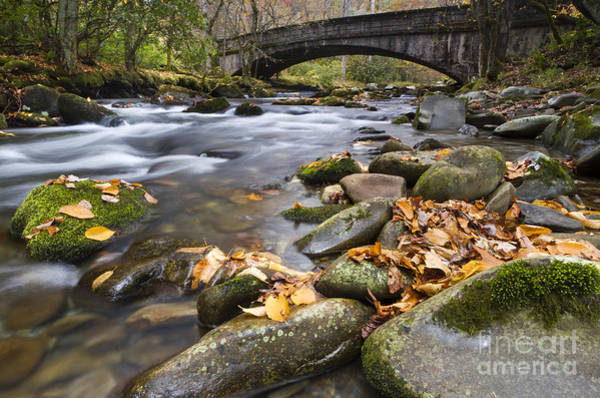 Wall Art - Photograph - Stream In The Great Smokie Mountain National Park by Dustin K Ryan