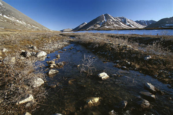 Photograph - Stream Running Over Tundra, Arctic by Gerry Ellis