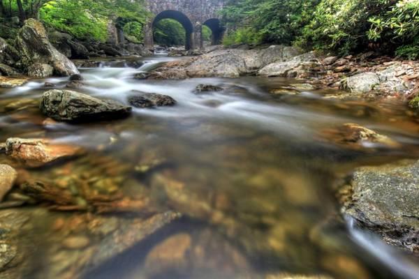 Photograph - Stream Scene by Doug McPherson
