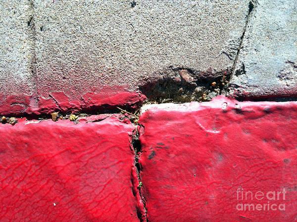 Photograph - Streets Of Coronado Island 23 by Marlene Burns